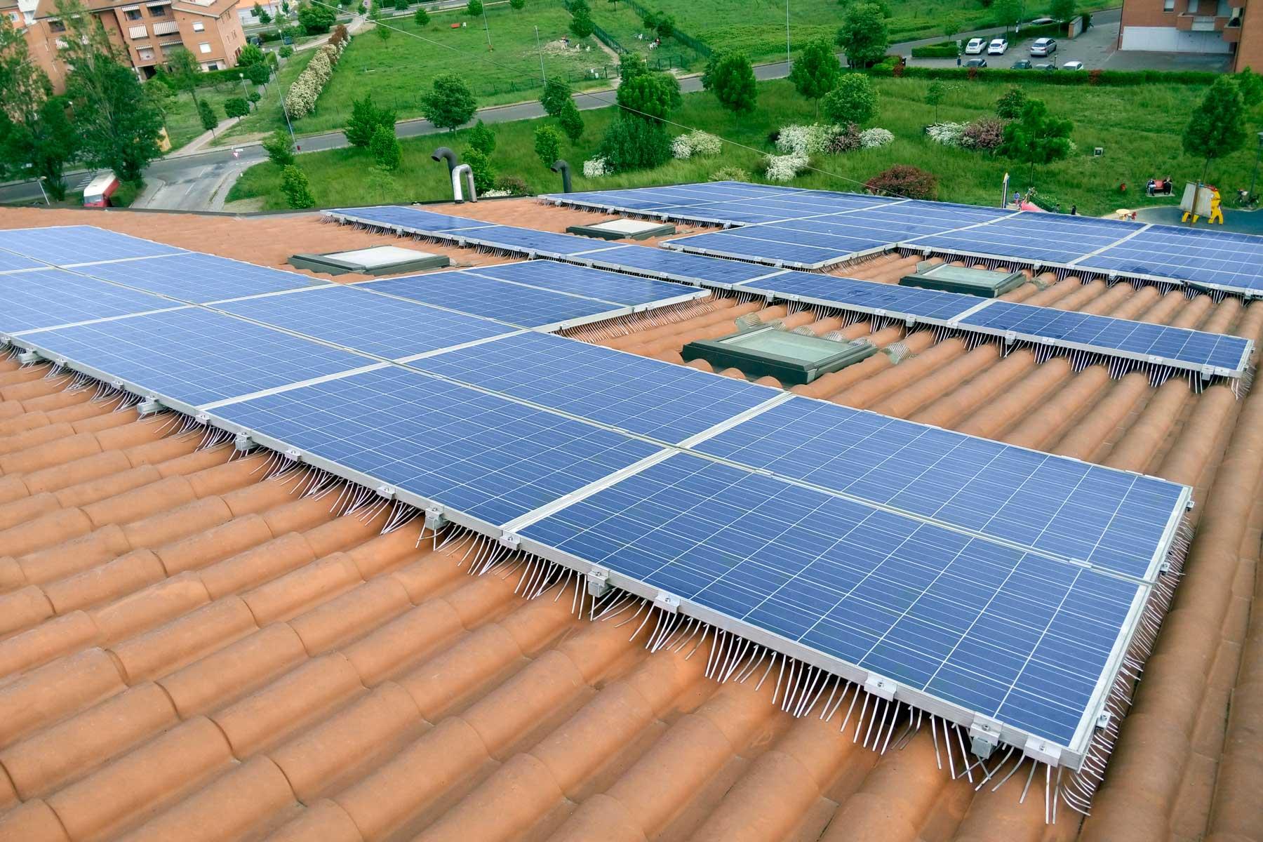 sistema anti piccione isidoro installato su impianto fotovoltaico esteso