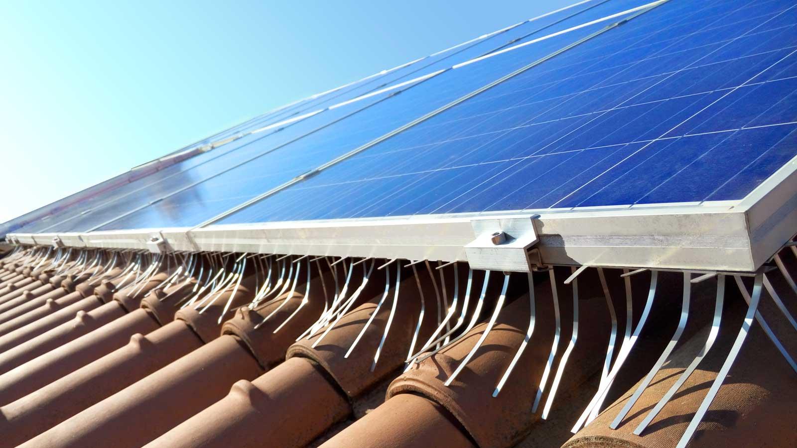 Isidoro System anti piccione per pannelli solari hero section