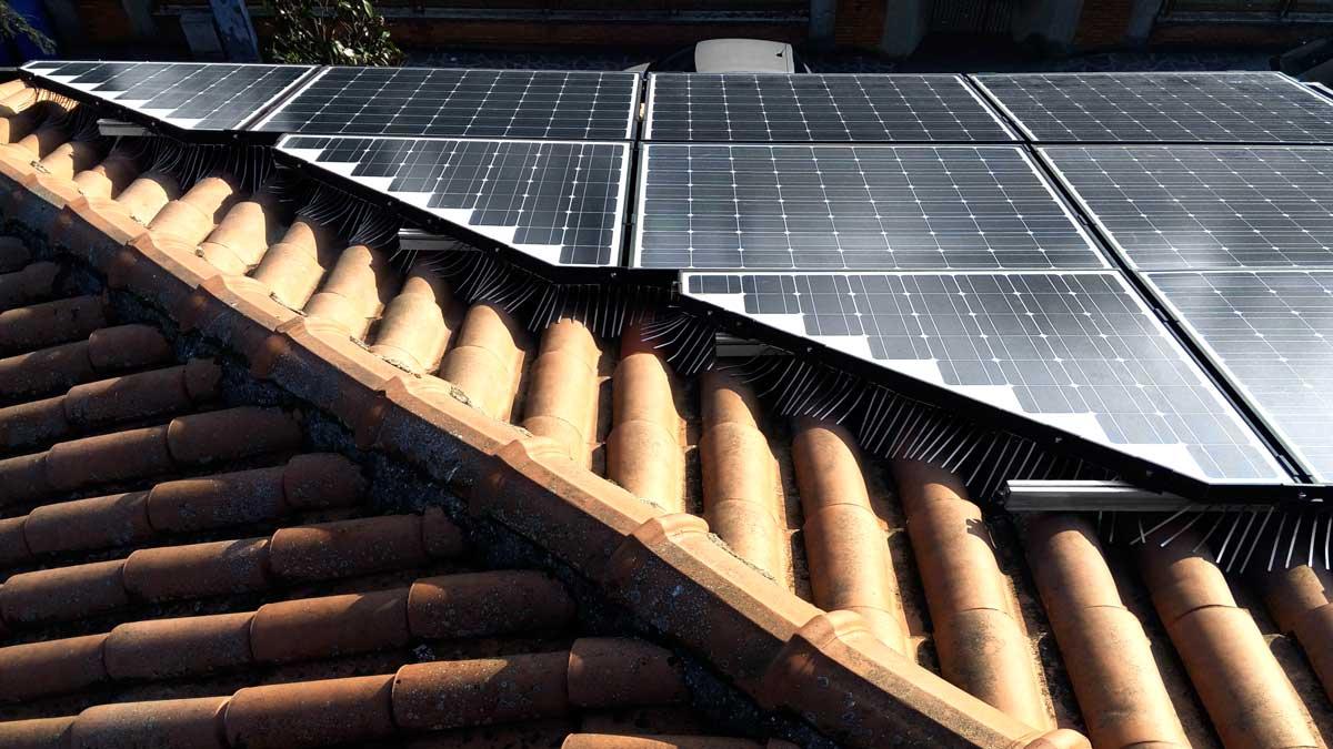 Installazione dissuassore anti piccioni su pannelli fotovoltaici triangolari